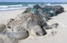 "Conservation: More on marine debris and ""Ghost Fishing"""