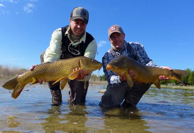 Image by John Montana. John Montana's carp blog spot.