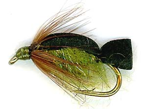 swimming-caddis-pupa