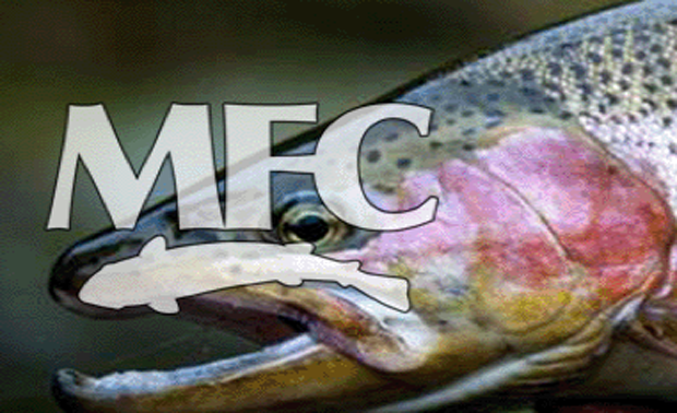 Gadget Review: MFC's River Steel family of streamside tools