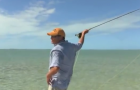 Tips & Tactics:Big flies, high winds and taking too many punches