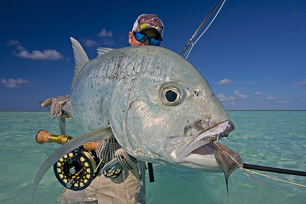 when targeting shallow water giant trevally gts on the fly you may only