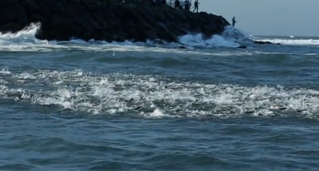Video:  Running The Coast- 1,000 miles with the striped bass migration