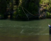 Industry News: RIO's well timed intro of Skagit Trout Max line