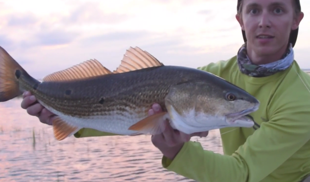 Video – FloodWay – successful redfishing on flood tides in FL