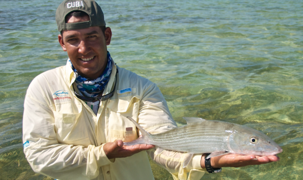 Cuban bonefish. Photo by Rick Bannerot.