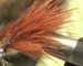 Fly Tying: The most popular carp fly is easy to tie