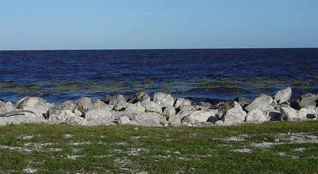 Editorial: Make fixing the Everglades a priority