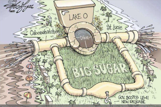 Cartoon from Jason Harrison's post in The SWFL Clean Water Movement (McGregor, Florida).