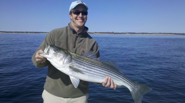 News: The commercial and recreational saltwater fishing results just in . . .