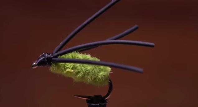 At The Vise: Tim Flagler's Bully Bluegill Spider