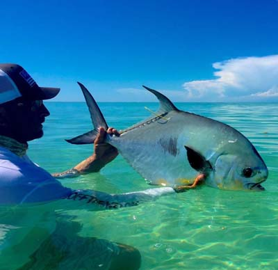 A participant holds a permit during acoustic tagging research. Credit: Bonefish & Tarpon Trust