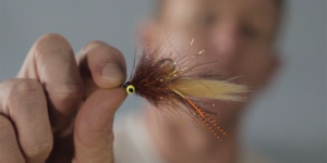 At The Vise: For those of us voting for Redfish in any election