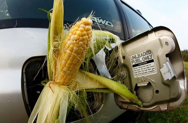 Opinion: Is ethanol our Rube Goldberg contrivance?