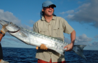 News: FWC sets new barracuda size limits for South Florida