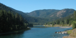 Take Action: Petition to protect our public lands