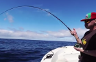 Video: Fly fishing for blue sharks off the coast of San Diego