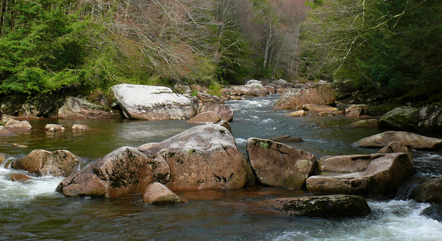 Household chemicals and prescription drugs in your trout stream?