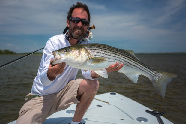 ASMFC'S February meeting and what it means for stripers