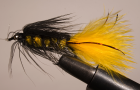 Wooly Bugger: The most famous fly of all time?