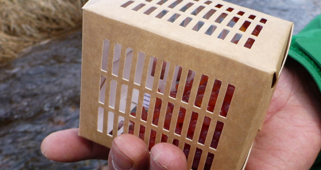 Biodegradable egg boxes