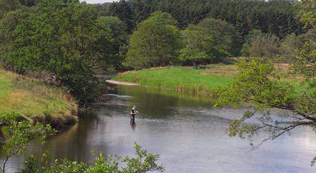 Quality fly fishing in the UK on the cheap