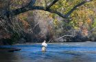 Chattahoochee Trout, the 'Compleat Anglers' playbook