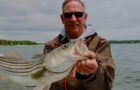 Striped bass stock assessment is bleak