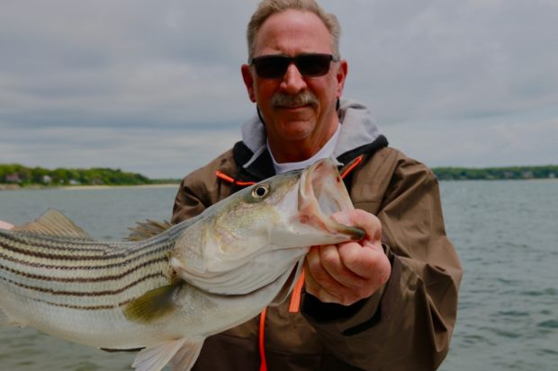 News: Striped bass reference points called into question