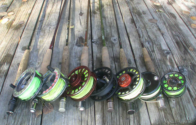 Understanding basic fly lines and backing. It matters