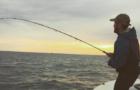 Dearth of bluefish and slow bass season on Martha's Vineyard
