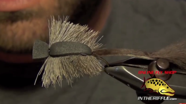 At The Vise: Morrish Mouse