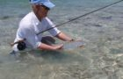Industry News: Bonefish & Tarpon Trust update on habitats