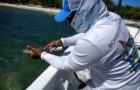 Bonefish & Tarpon Trust forges ahead with egalité