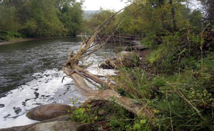 Fixing the habitat, the best of Trout Unlimited values expressed