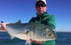 American Saltwater Guides Association launches
