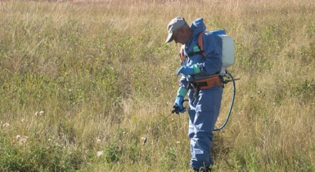 How herbicides can save fish and wildlife