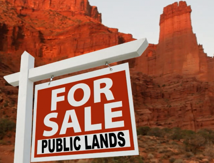 Your birthright at citizenship is public land endowment