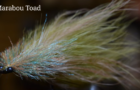 Evolution of the Marabou Tarpon Toad Fly