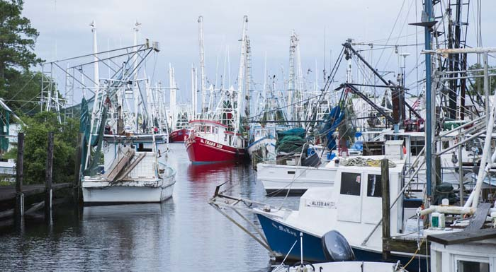 Conservation: Historic Alabama docks and waterfront to be protected