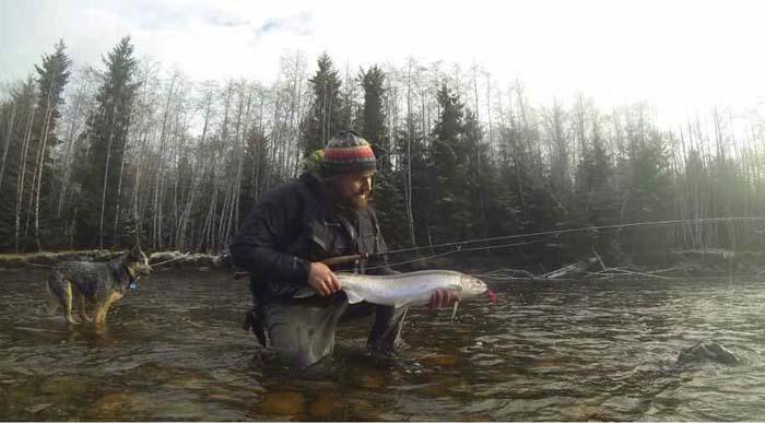 Ocean waters warming affecting Atlantic salmon returns