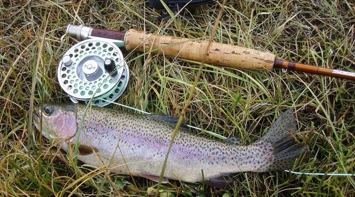 Trout Country: Fly Fishing on a changing Yellowstone