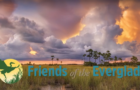 Bullsugar merged with Friends of the Everglades