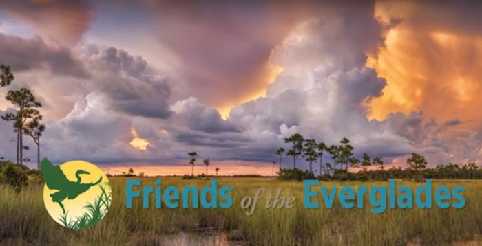 Bullsugar merged with Friends of the Everglades