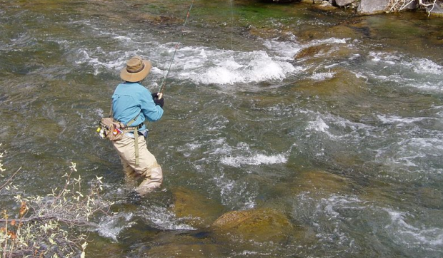 Fishing For the Fight raises $200,000 in fly fishing tournament