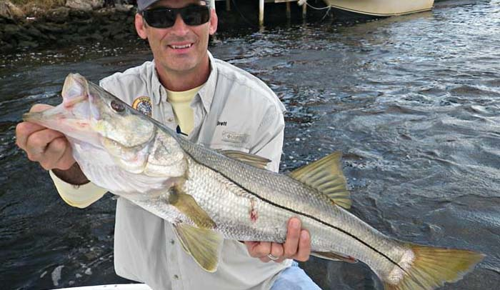 Industry News: Snook Foundation Rebrands With Angler Action Foundation