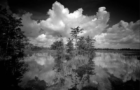 Everglades photographer raises conservation awareness