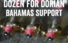 #DozenforDorian: Fly tyers unite for Hurricane Dorian victims
