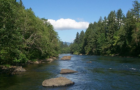 Salmon return to Oregon river to spawn after $2M restoration project