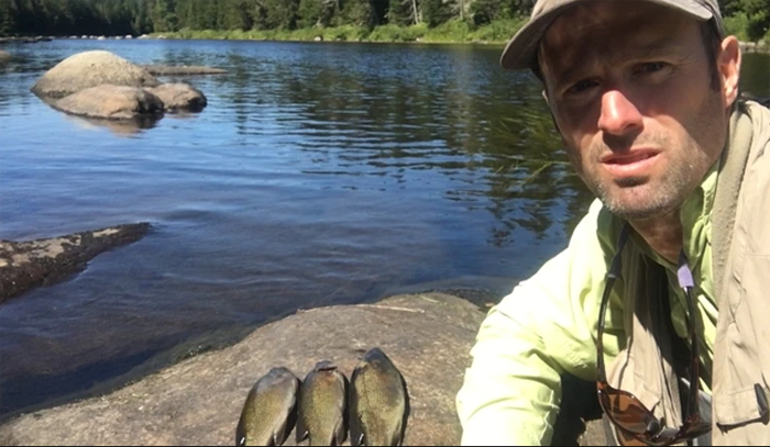 The nuclear option – eradicate invasive bass to save Miramichi salmon